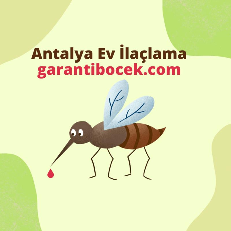 Antalya-Ev-Ilaclama